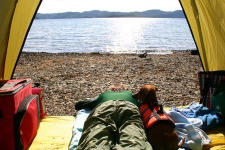 sleepy-tent-1305870
