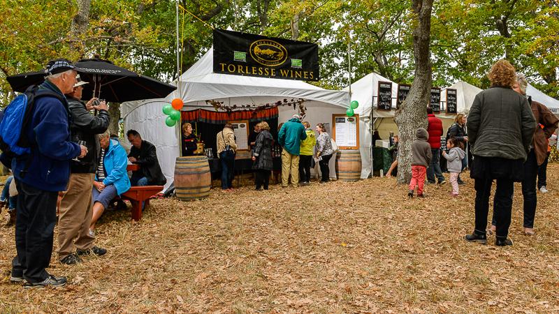 Wine And Food Festival Waipara